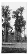 Florida Spanish Moss Beach Towel