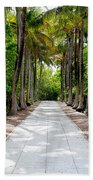 Florida Walkway Beach Towel