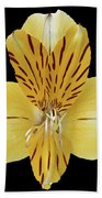 Flower 001 Beach Towel