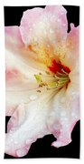 Flower 225 Beach Towel