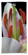 Flower 234 Beach Towel