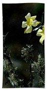 Flower Among The Moss Beach Towel
