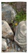 Flower And Rocks Beach Towel