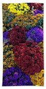 Flower Bed Across The Street From The Grand Palais Off Of Champs Elysees  Beach Towel