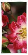 Flower-cream-pink-red-rose Beach Towel