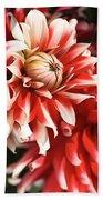 Flower-dahlia-red-white-trio Beach Sheet