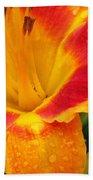 Flower Garden 06 Beach Towel