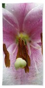 Flower Garden 21 Beach Towel