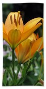 Flower Garden 22 Beach Towel