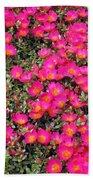 Flower Garden 39 Beach Towel