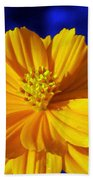 Flower Garden 45 Beach Towel