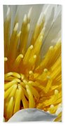 Flower Garden 69 Beach Towel