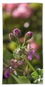 Flower-geranium Buds Beach Towel
