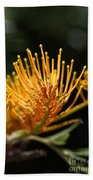 Flower-grevillea-australian Native Beach Towel