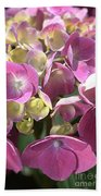 Flower-hydrangea Pink Beach Towel