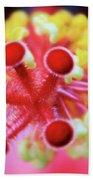 Flower In Pink Beach Towel