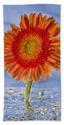 Flower In Water Beach Towel