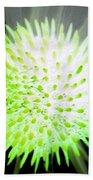 Flower Power 1361 Beach Towel