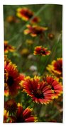 Texas Indian Blanket -  Luther Fine Art Beach Towel