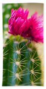 Flowering Cactus Beach Towel