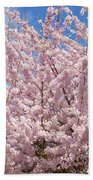 Flowering Cherry Tree Beach Towel