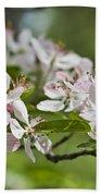 Flowering Crabapple 2 Beach Towel