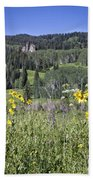 Flowers At Crested Butte Beach Towel