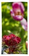 Flowers At Dallas Arboretum V14 Beach Towel
