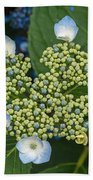 Flowers At Soos Creek Botanical Garden II Beach Towel