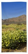 Flowers At The Headstone Beach Towel