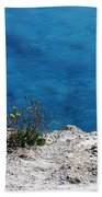 Flowers By The Blue Beach Towel