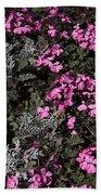 Flowers Dallas Arboretum V16 Beach Towel