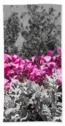 Flowers Dallas Arboretum V17 Beach Towel