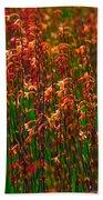 Flowers Of Fire Beach Towel