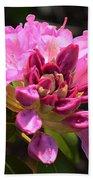 Flowers Of Spring Beach Towel