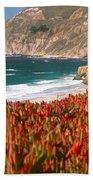 Flowers On The Coast, Big Sur Beach Towel