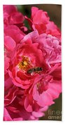 Flowers-roses-pink-bee Beach Towel