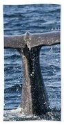 Flukes Of A Sperm Whale 2 Beach Towel by Heiko Koehrer-Wagner