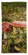 Fly Amanita Beach Towel