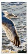 Fly By Beach Towel