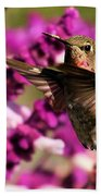 Flying At Attention Beach Towel