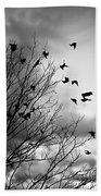 Flying Birds Beach Towel