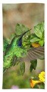 Flying Green Violetear Beach Towel