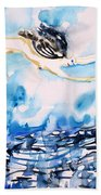 Flying Over Troubled Waters Beach Towel