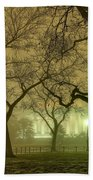 Foggy Approach To The Lincoln Memorial Beach Towel
