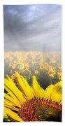 Foggy Field Of Sunflowers Beach Towel