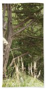 Foliage Art Beach Towel