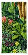 Foliage IIi Beach Towel by Catherine Abel