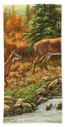 Whitetail Deer - Follow Me Beach Towel by Crista Forest