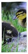 Follow The Leader Ducky Style Beach Towel